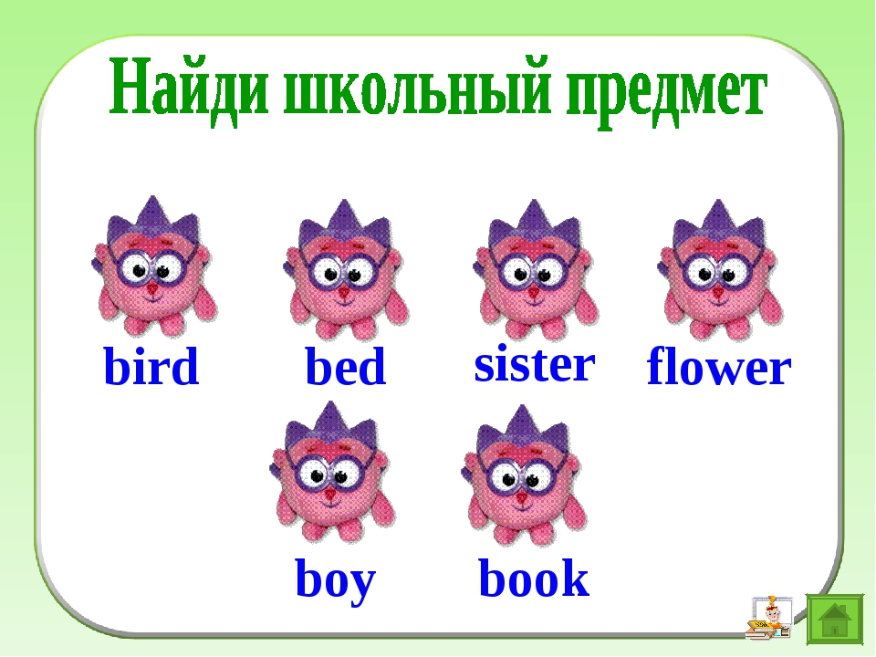 bed sister flower boy book bird