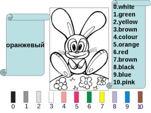 оранжевый 0.white 1.green 2.yellow 3.brown 4.colour 5.orange 6.red 7.brown 8.
