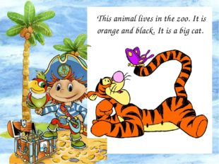 This animal lives in the zoo. It is orange and black. It is a big cat.