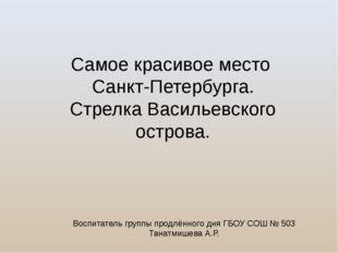 Самое красивое место Санкт-Петербурга. Стрелка Васильевского острова. Воспита