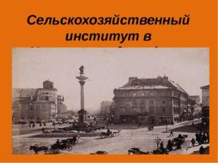 Сельскохозяйственный институт в Новоалександрии (юго-восток Польши, 19 век)