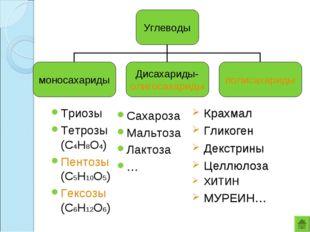 Триозы Тетрозы (С4Н8О4) Пентозы (С5Н10О5) Гексозы (С6Н12О6) Сахароза Мальтоза