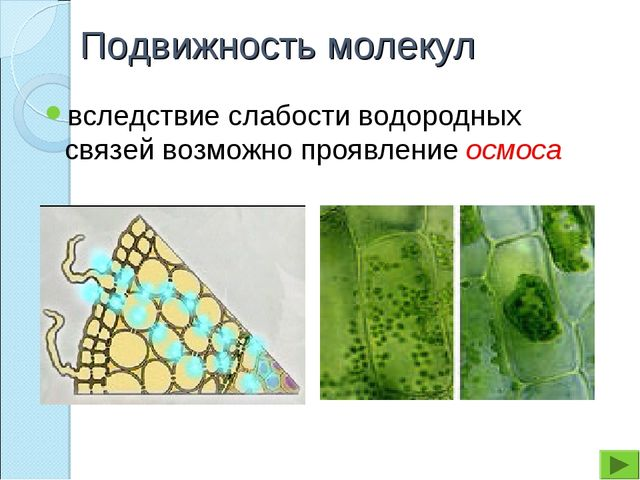 Подвижность молекул вследствие слабости водородных связей возможно проявление...