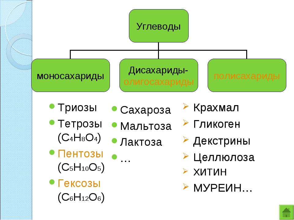Триозы Тетрозы (С4Н8О4) Пентозы (С5Н10О5) Гексозы (С6Н12О6) Сахароза Мальтоза...