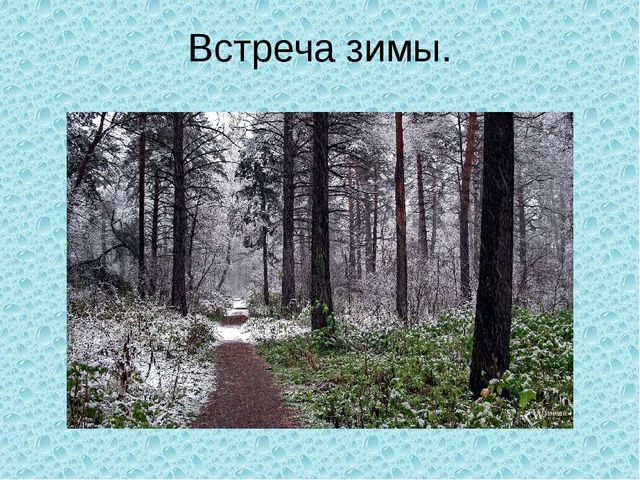 Встреча зимы.