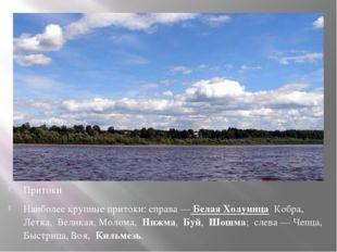 Притоки Наиболее крупные притоки: справа —Белая Холуница Кобра, Летка, В