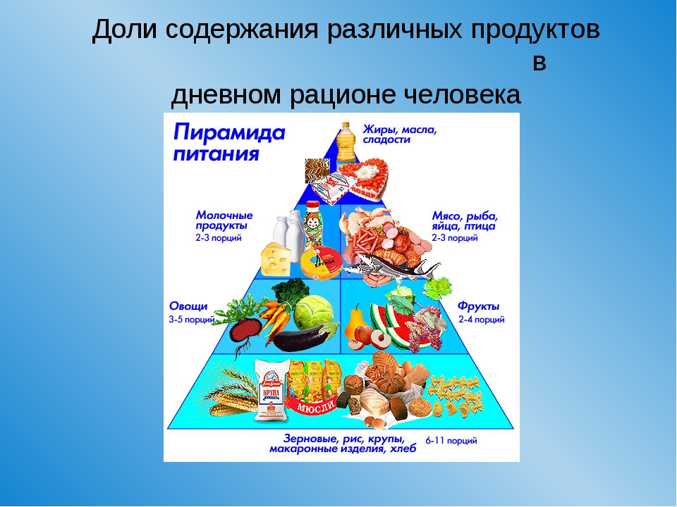 Доли содержания различных продуктов в дневном рационе человека