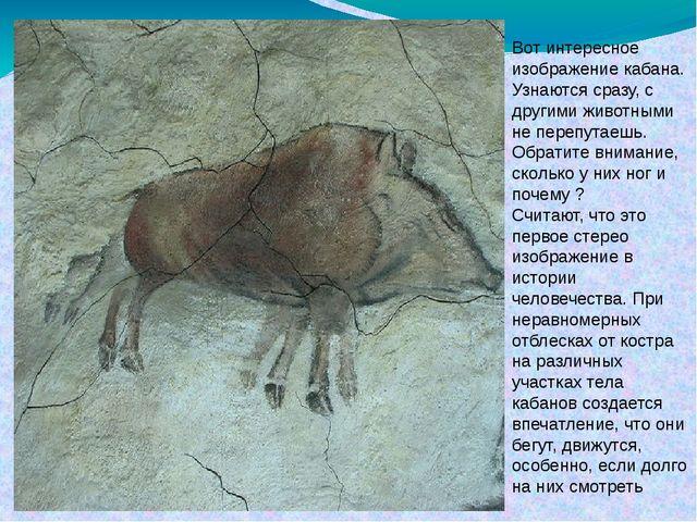 Вот интересное изображение кабана. Узнаются сразу, с другими животными не пер...