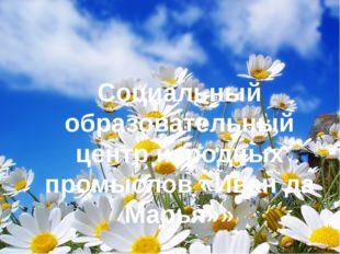 Социальный образовательный центр народных промыслов «Иван да Марья»»