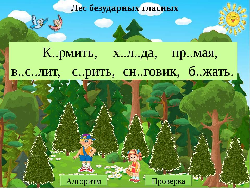 Лес безударных гласных К..рмить, х..л..да, пр..мая, в..с..лит, с..рить, сн..г...