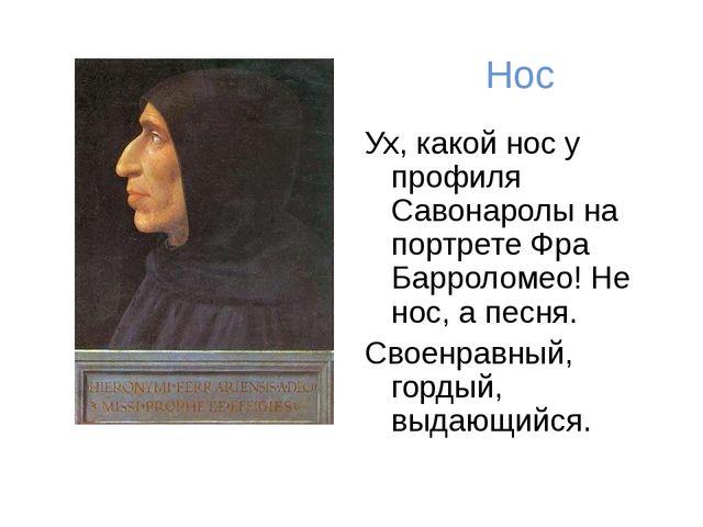 Нос Ух, какой нос у профиля Савонаролы на портрете Фра Барроломео! Не нос, а...
