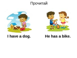 Прочитай I have a dog. He has a bike.