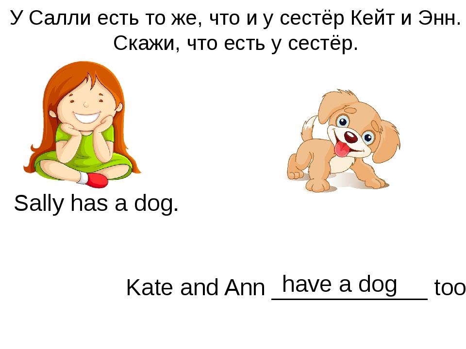У Салли есть то же, что и у сестёр Кейт и Энн. Скажи, что есть у сестёр. Sall...
