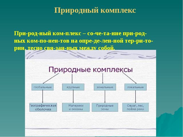 Природный комплекс Природный комплекс – сочетание природных компоне...