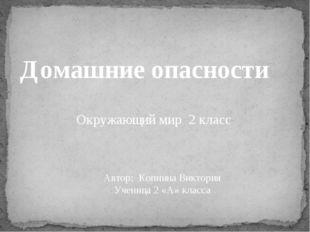 Домашние опасности Окружающий мир 2 класс Автор: Копнина Виктория Ученица 2 «