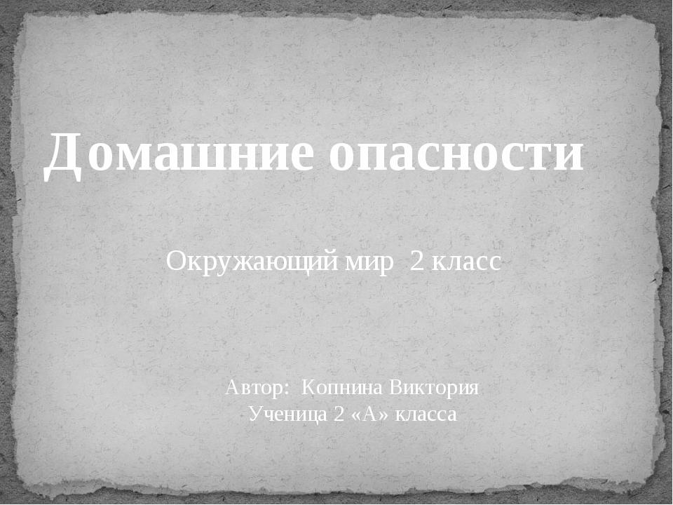 Домашние опасности Окружающий мир 2 класс Автор: Копнина Виктория Ученица 2 «...