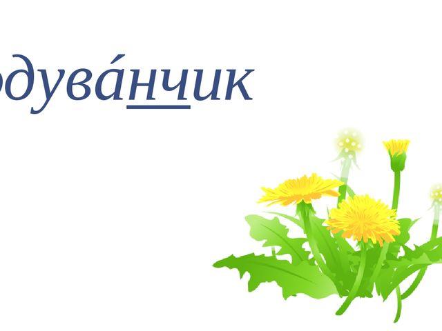 одувáнчик