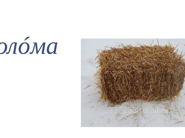 солóма