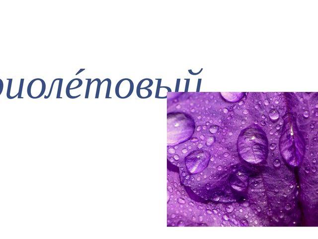 фиолéтовый