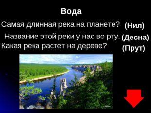 Вода Самая длинная река на планете? (Нил) Название этой реки у нас во рту. (Д