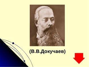 (В.В.Докучаев)