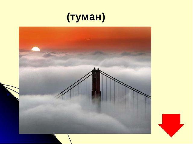 (туман)