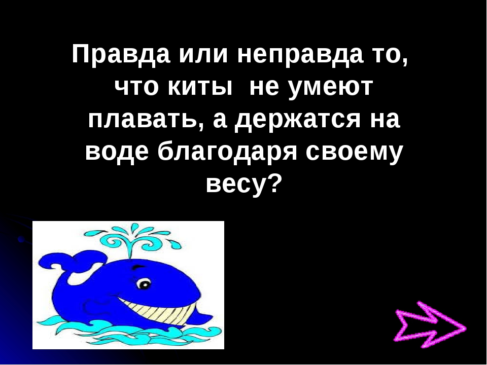 Правда или неправда то, что киты не умеют плавать, а держатся на воде благода...
