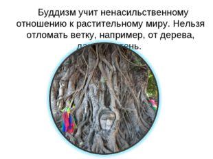 Буддизм учит ненасильственному отношению к растительному миру. Нельзя отлома