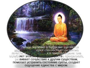 Большое значение в буддизме уделяется медитации, которая способствует развит