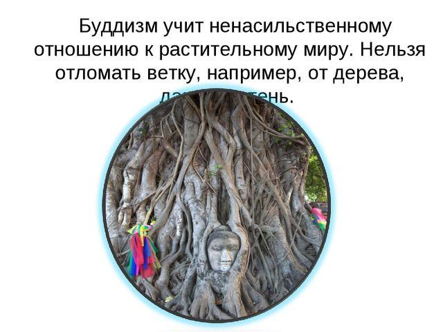 Буддизм учит ненасильственному отношению к растительному миру. Нельзя отлома...