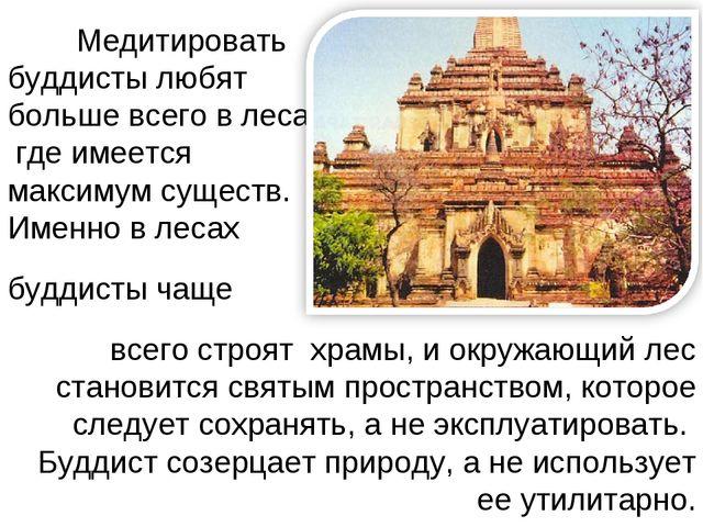 Медитировать буддисты любят больше всего в лесах, где имеется максимум сущес...