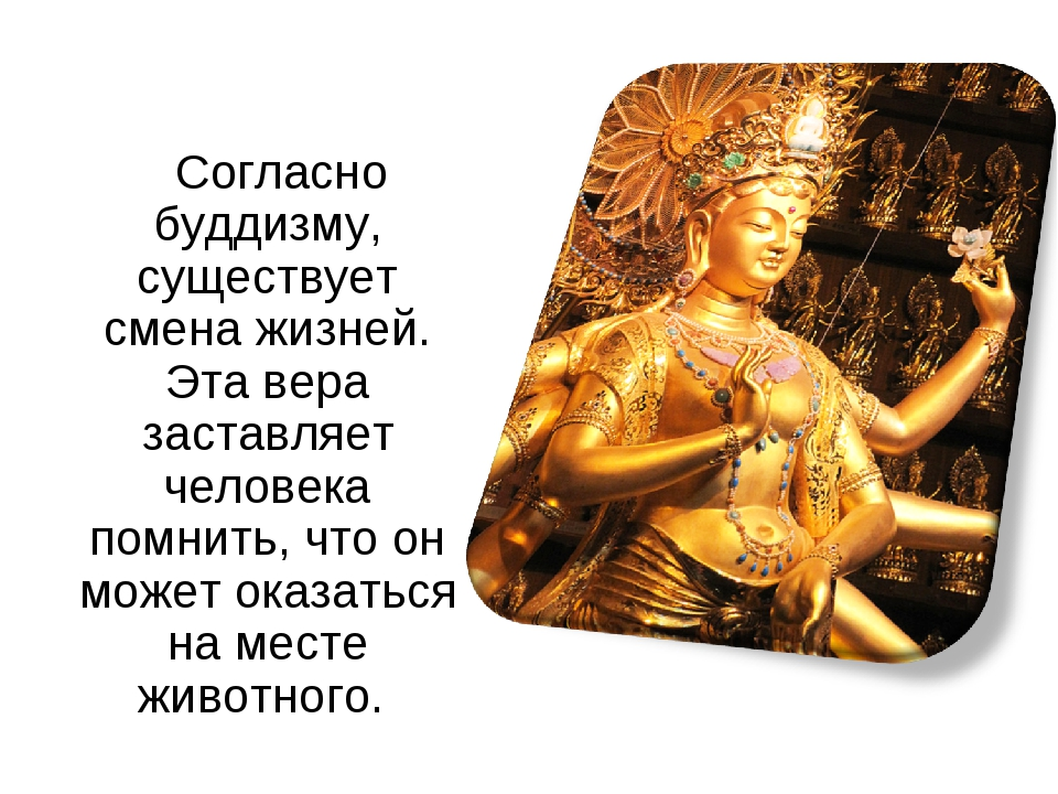 Согласно буддизму, существует смена жизней. Эта вера заставляет человека пом...