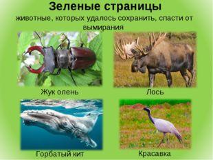 Зеленые страницы животные, которых удалось сохранить, спасти от вымирания Ло