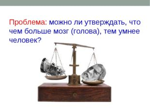Проблема: можно ли утверждать, что чем больше мозг (голова), тем умнее челов
