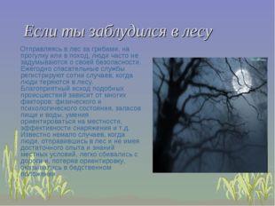 Если ты заблудился в лесу Отправляясь в лес за грибами, на прогулку или в пох