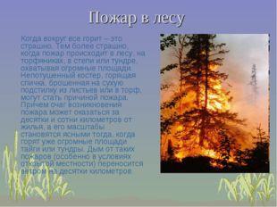 Пожар в лесу Когда вокруг все горит – это страшно. Тем более страшно, когда п
