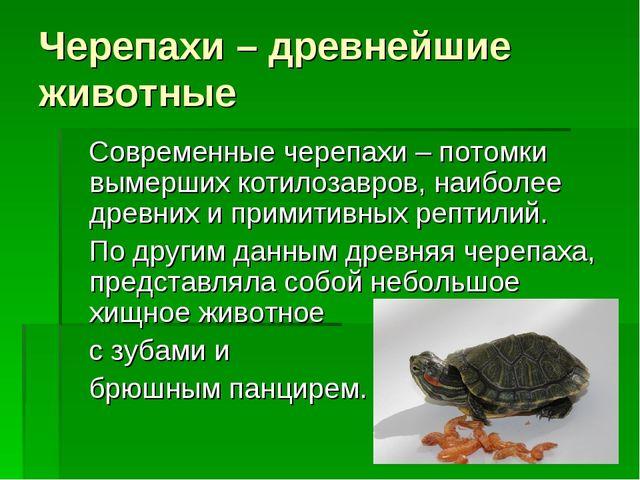 Черепахи – древнейшие животные Современные черепахи – потомки вымерших котило...