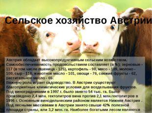 Австрия обладает высокопродуктивным сельским хозяйством. Самообеспечиваемость