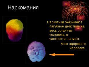 Наркомания Наркотики оказывают пагубное действие на весь организм человека, в
