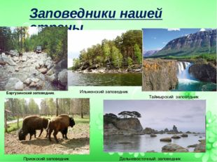 Заповедники нашей страны Баргузинский заповедник. Таймырский заповедник Ильме