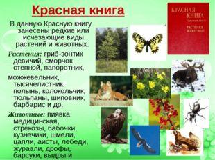 Красная книга В данную Красную книгу занесены редкие или исчезающие виды раст