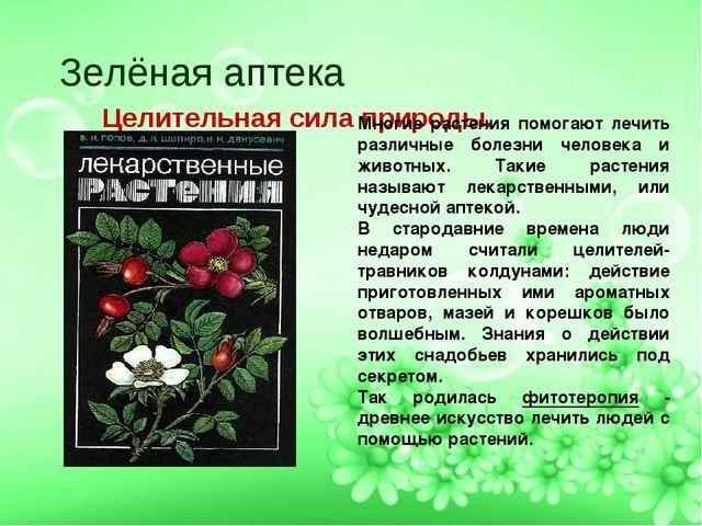 Зелёная аптека Целительная сила природы. Многие растения помогают лечить раз...