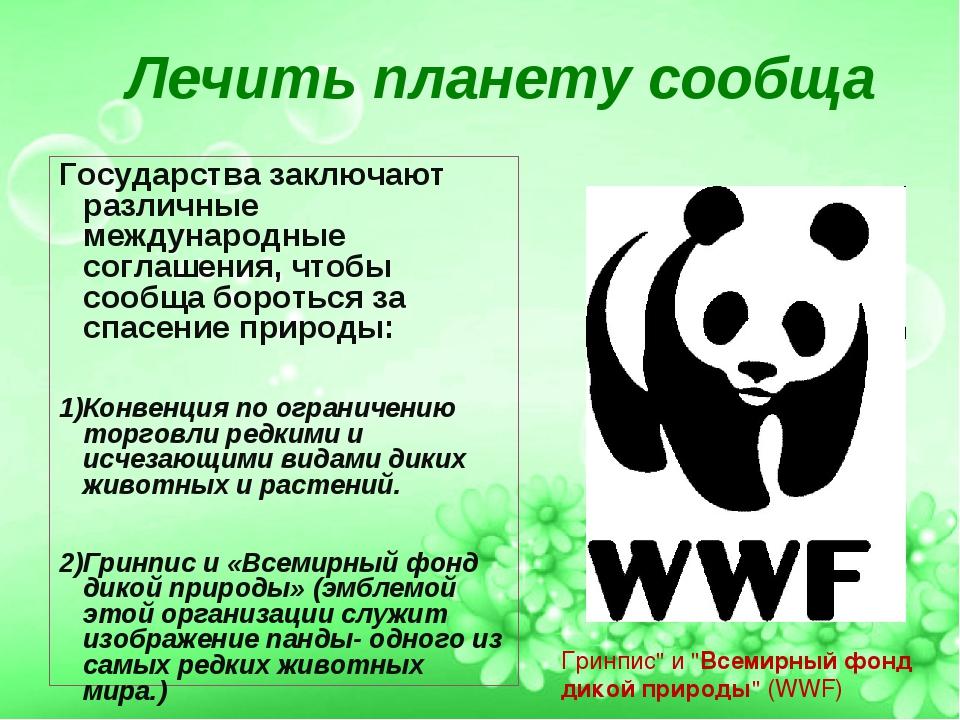 """Гринпис"""" и """"Всемирный фонд дикой природы"""" (WWF) Лечить планету сообща Государ..."""