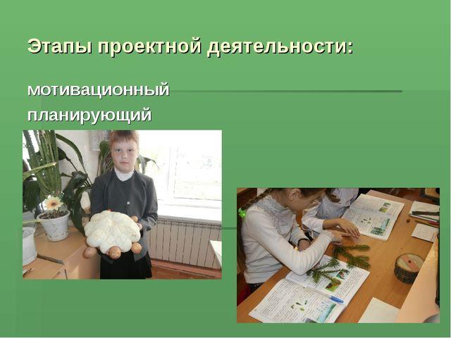 Этапы проектной деятельности: мотивационный планирующий информационно-операци...