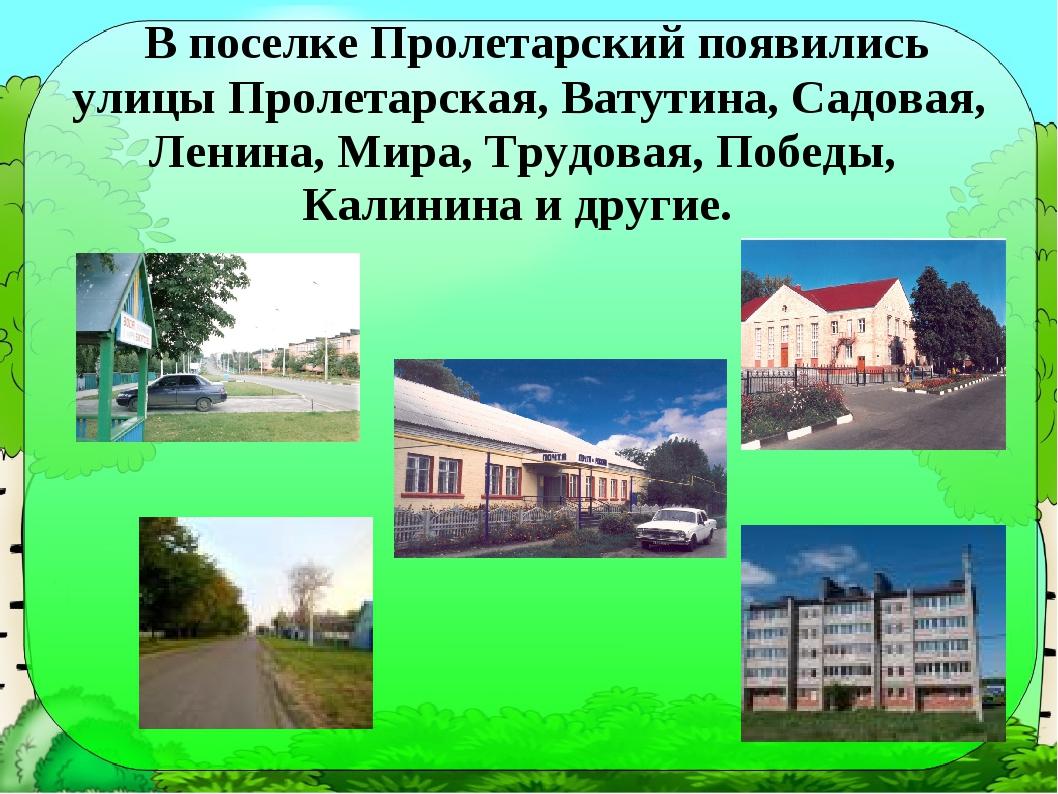 В поселке Пролетарский появились улицы Пролетарская, Ватутина, Садовая, Лени...