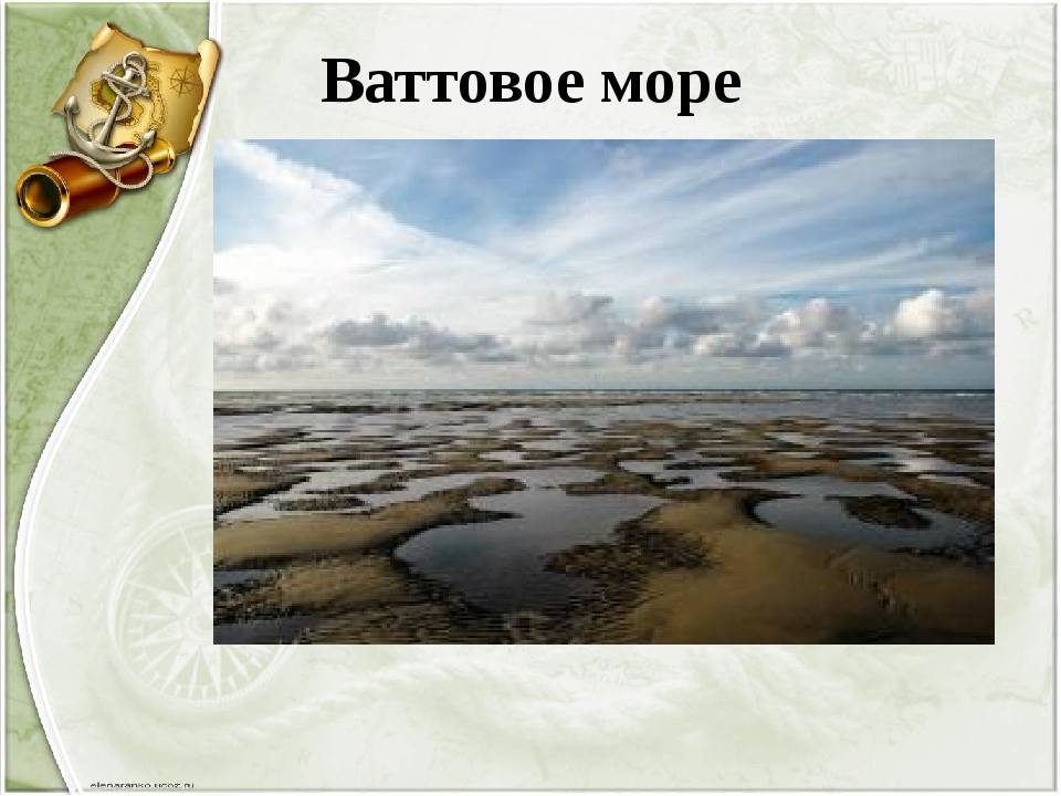 Ваттовое море