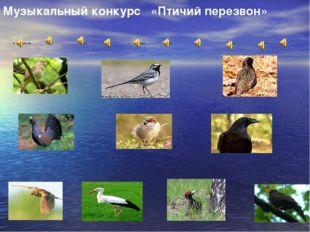 Музыкальный конкурс «Птичий перезвон»