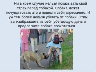 Ни в коем случае нельзя показывать свой страх перед собакой. Собака может по