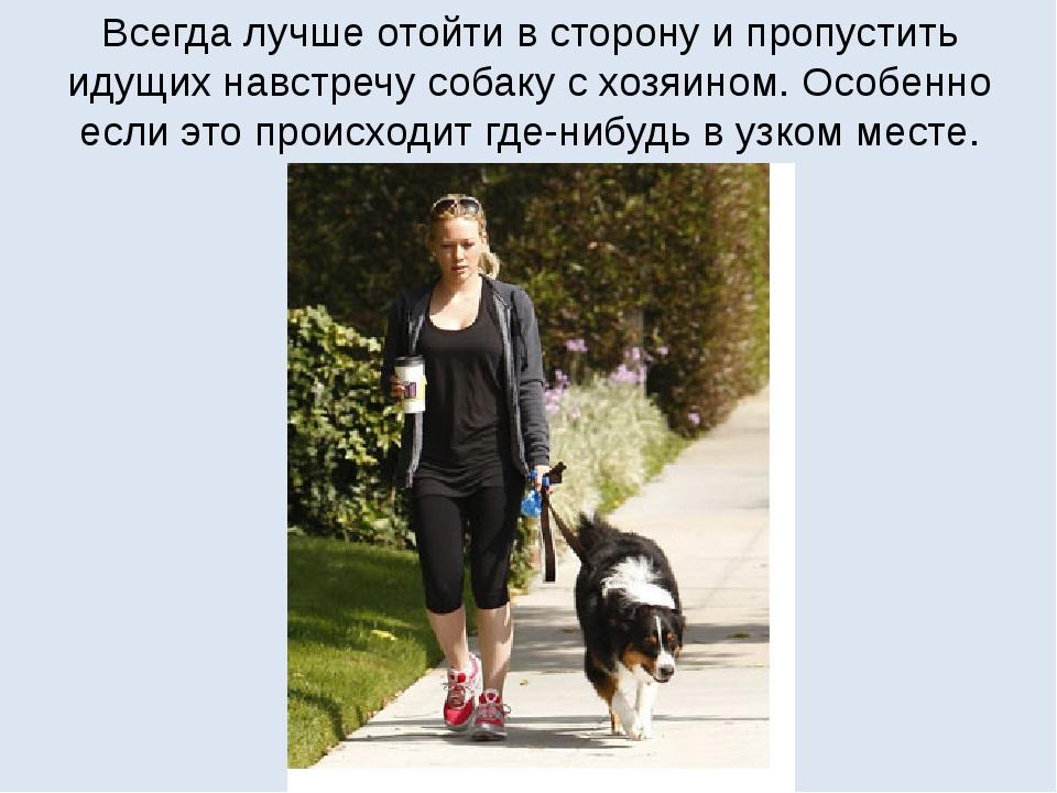 Всегда лучше отойти в сторону и пропустить идущих навстречу собаку с хозяином...
