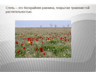 Степь – это бескрайняя равнина, покрытая травянистой растительностью.